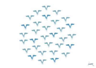 34. Blue - birds