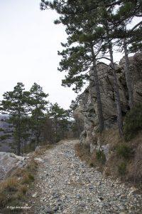 Il percorso