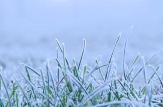 winter-84723_640