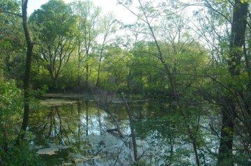 Morava_small_lake