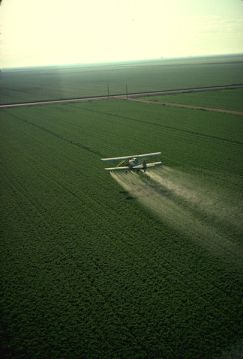 405px-Cropduster_spraying_pesticides