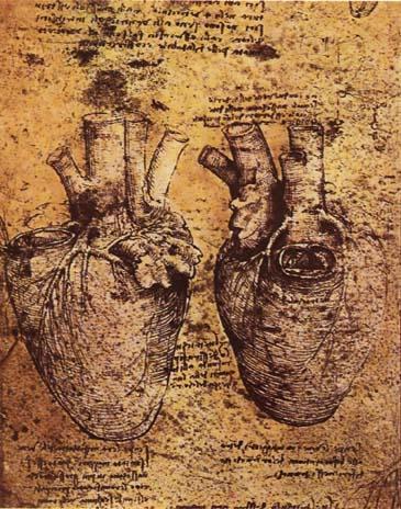 Leonardo_da_vinci,_Heart_and_its_Blood_Vessels