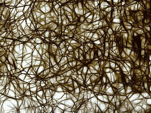 neurons-877574_640