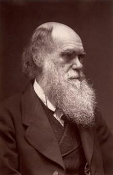 Darwin_-_John_G_Murdoch_Portrait_restored