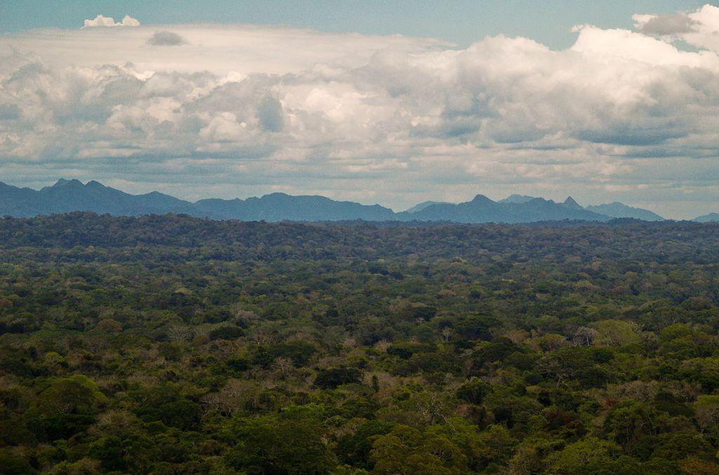 aree protette degradate