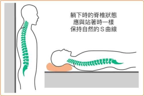 放鬆下的脊椎狀態應該是自然的S型曲線