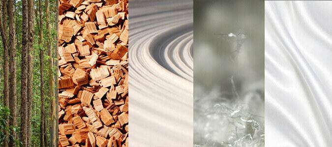 樹林木塊木漿纖維布