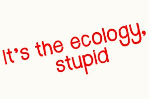 It's the Ecology Stupid