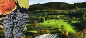 Srbija – Prodaja zemljišta pod Kosmajem