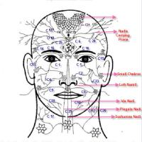 Nadis, os meridianos da energia do corpo