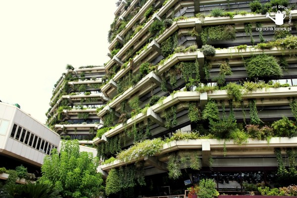 vertical garden in barcelona Gardens, parks, squares and green places in Barcelona