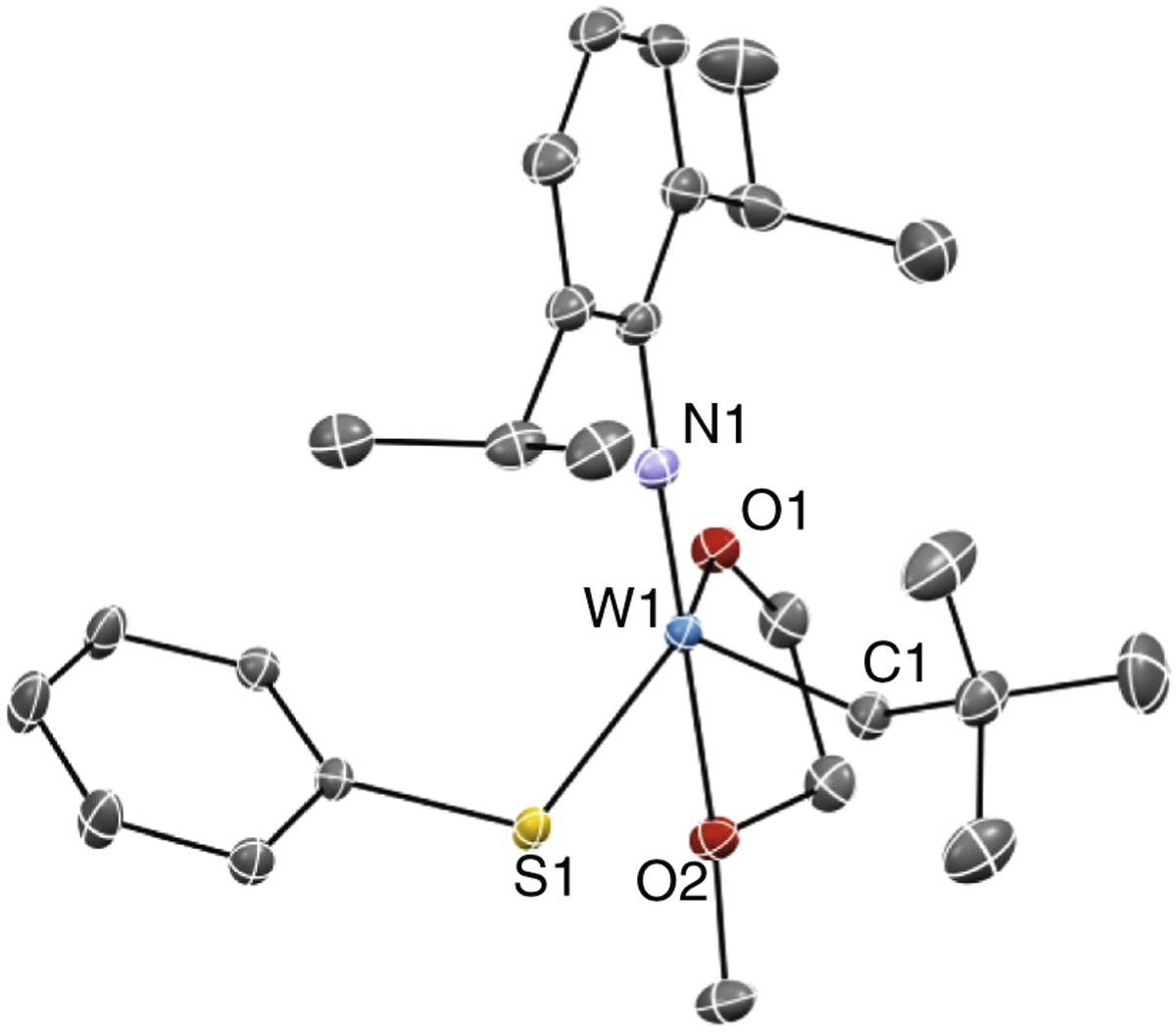 Synthesis And Reactivity Of A Pentacoordinated Thiolate