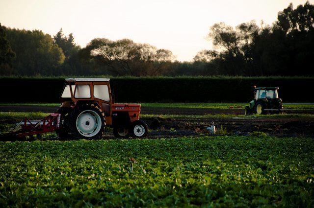Ogulin.eu Smije li se raditi na polju?