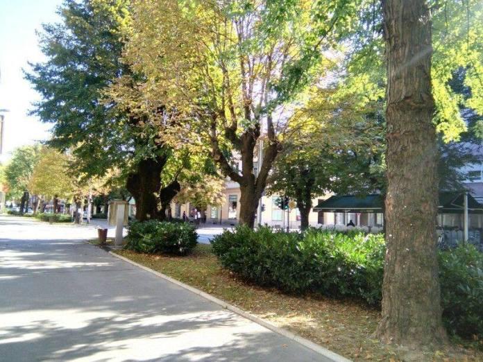 Ogulin.eu Nema više zelenila u Ulici B. Frankopana