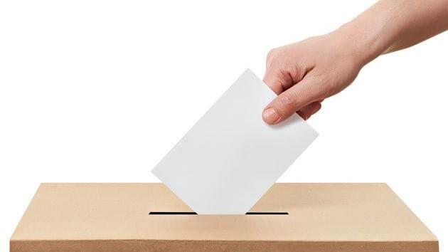 lokalnih izbora