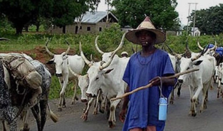 Suspected herdsmen killed farmer in Ogun