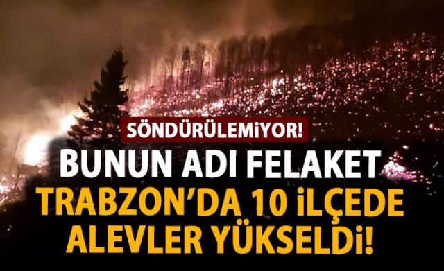 Trabzon'un 10 Ayrı İlçesinde Yangın