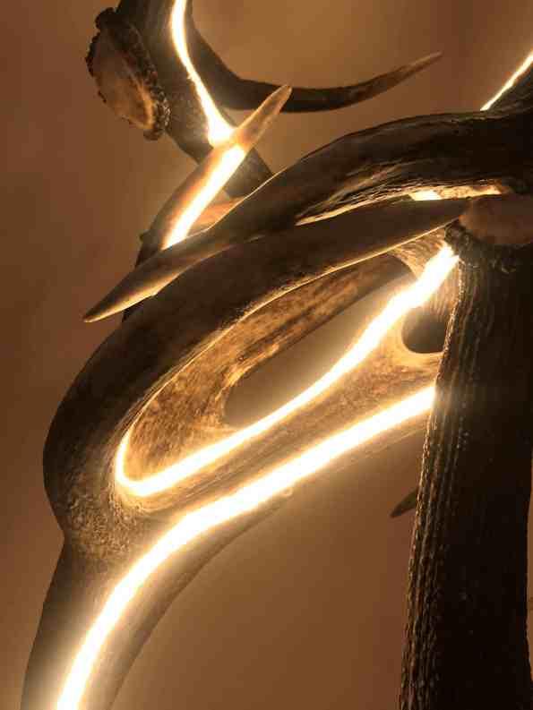 Design Design Stehlampe aus Geweih