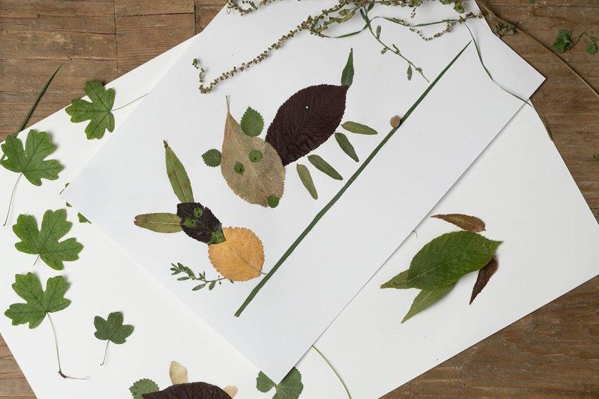 DIY: Basteln mit Blättern