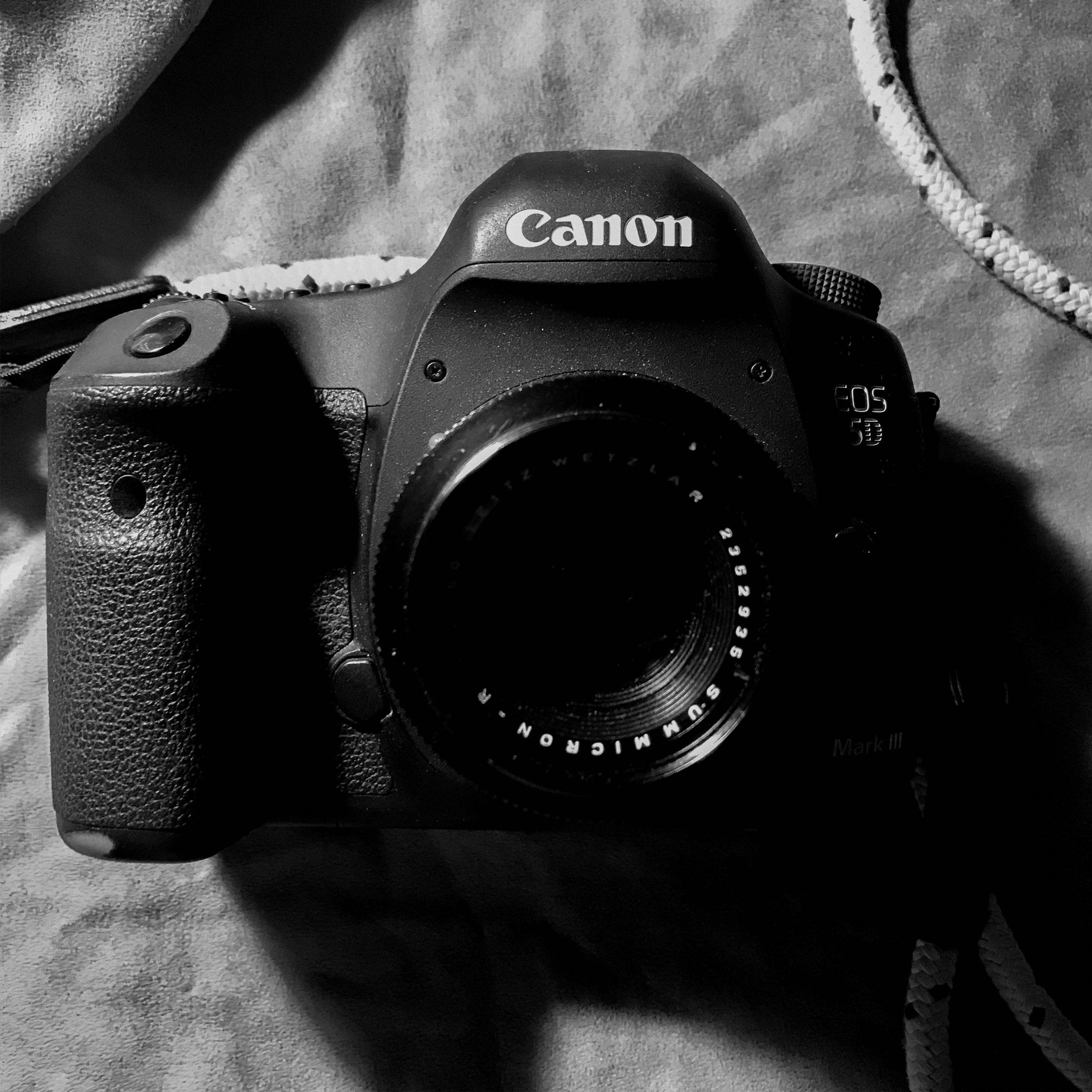 ライカRズミクロン50mmで、カメラも冬仕様に
