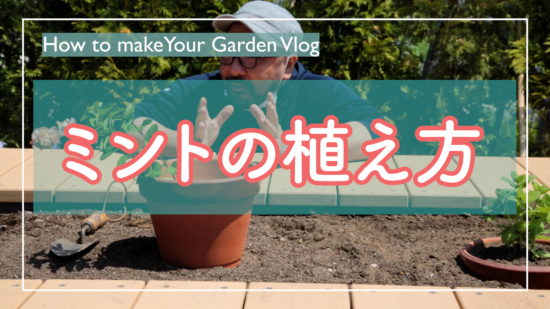 Read more about the article 5分でわかるミントの植え方