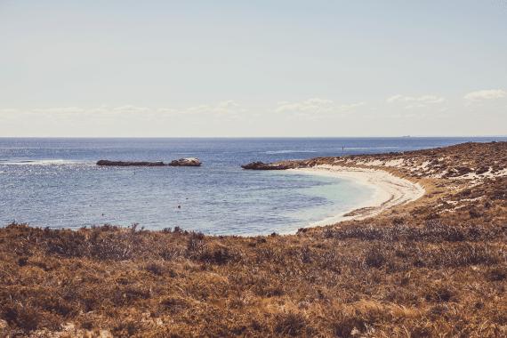 En dagstur till Rottnest Island
