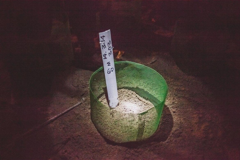 Turtle Conservation Project // Selingan Turtle Island Marine Park // Borneo