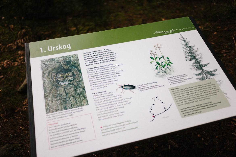tyresta-nationalpark-stockholm-28