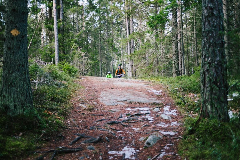 tyresta-nationalpark-stockholm-62
