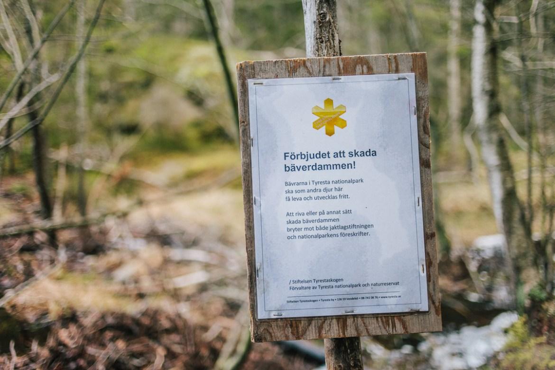 tyresta-nationalpark-stockholm-74