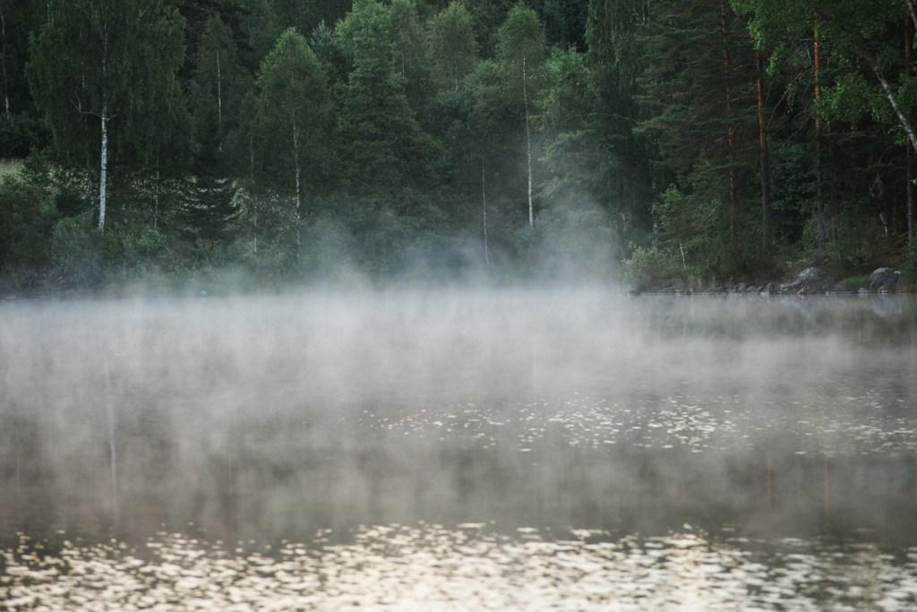 Barken Söderbärke Dalarna