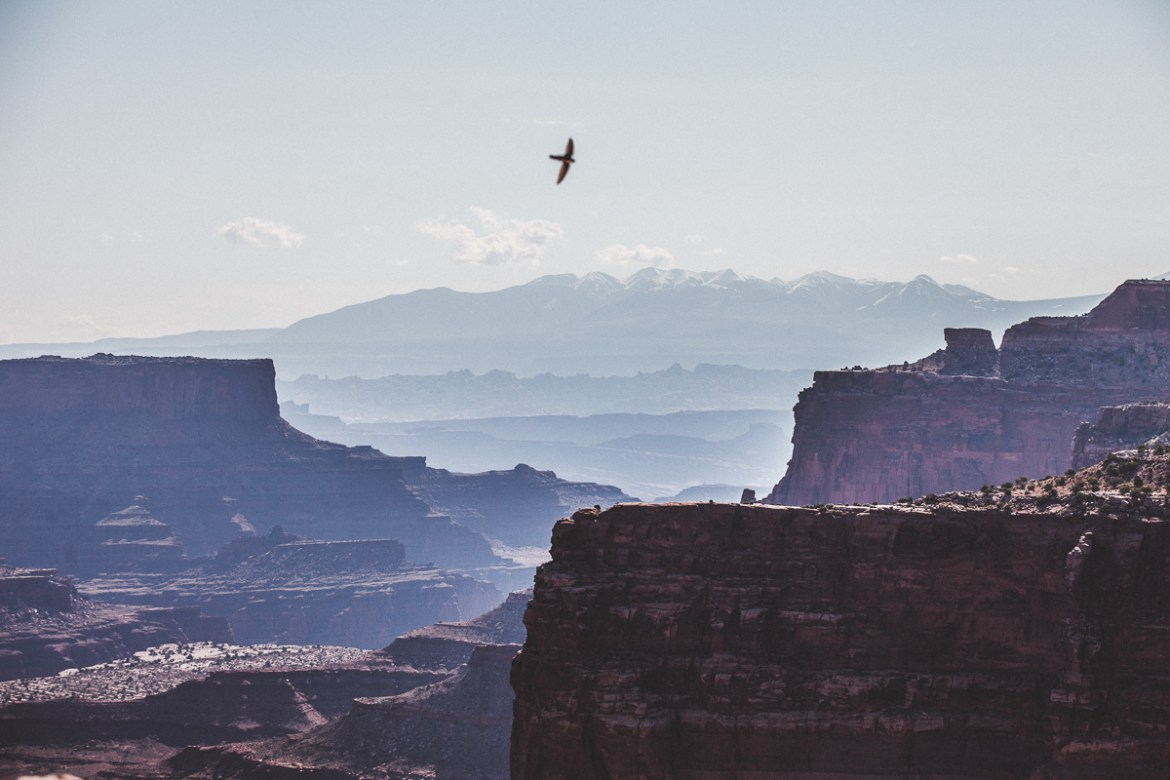 canyonlands-national-park-14