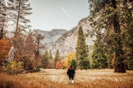 Fotodagbok: Yosemite National Park