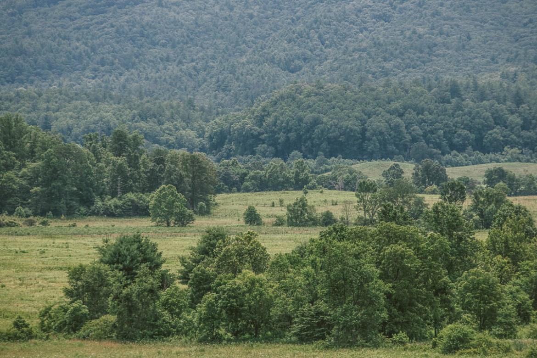 Det är gratis att besöka Great Smoky Mountains National Park i Tennessee