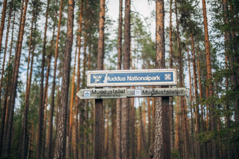Muddus nationalpark.