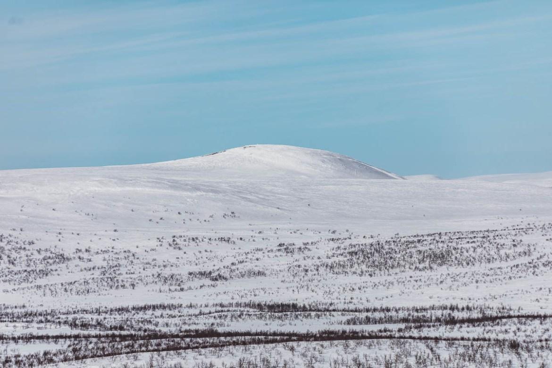 Lapplandsfjällen