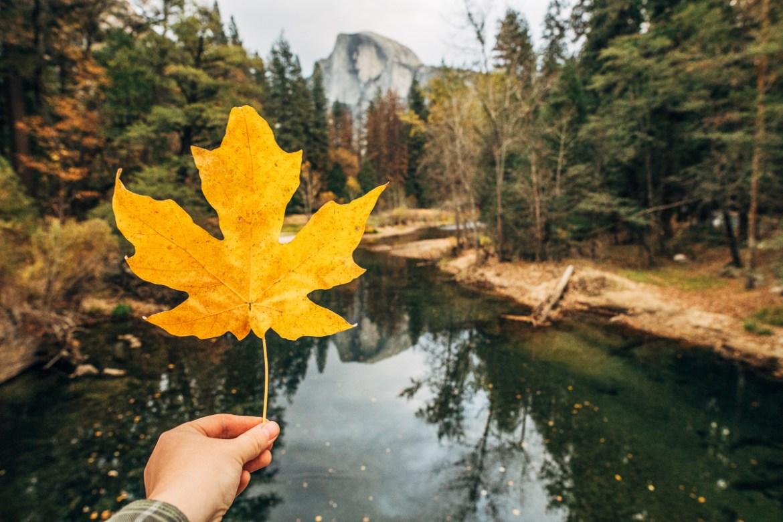 Yosemite National Park | UNESCO världsarv