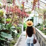 montreal botanical garden family travel