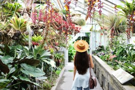 montreal botanical garden family travel