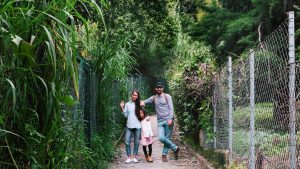 ohdeardrea family travel natural living vegan blog