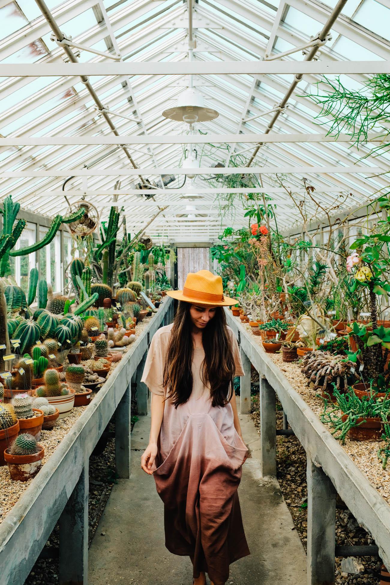 Outside Inspiration In New Orleans Botanical Garden