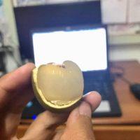 Buah Kristal Sarawak Setanding Laici