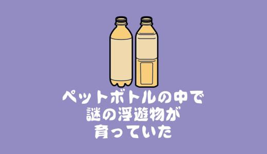汚部屋から出たペットボトル(ビン、缶も)の処理~ゴミ捨てまで