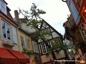 36-schnoor-viertel-tree-altstadt-bremen-germany