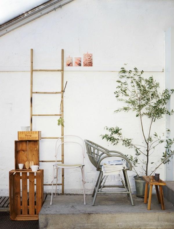 plant life + via ohidesignblog
