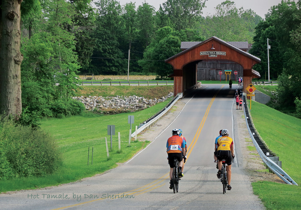 Bicycle riders approaching a covered bridge on the annual Hot Tamale bicycle tour, based in Marion, Ohio. Photo by Dan Sheridan