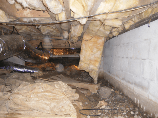 wet damp crawl space with hanging insulation
