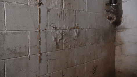 wet basement walls damaged by water