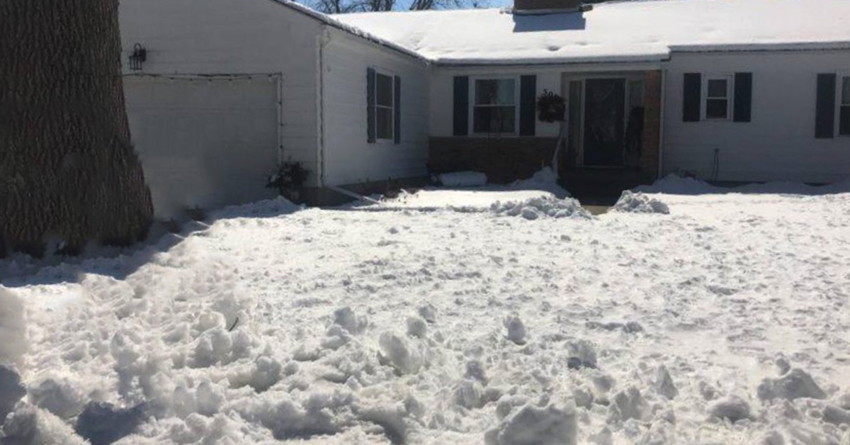 snow covered lawn