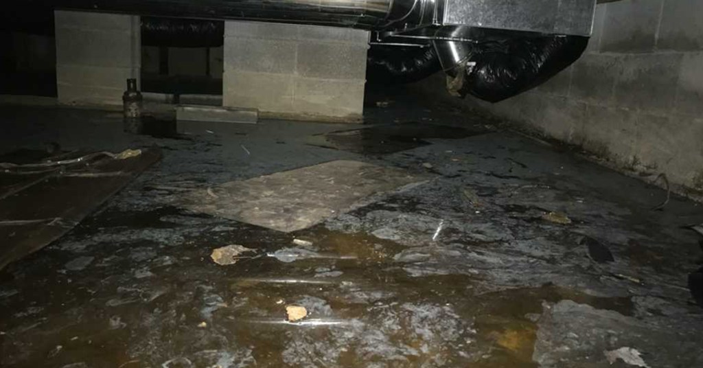 dirty wet humid crawl space